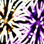 fireworks_lamerce06-8262013